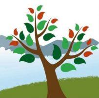 Newsletter nº4 – Alto Tâmega Florestal