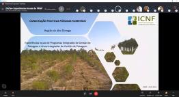 3ª WEBINAR | Ações de Capacitação Políticas Públicas Florestais